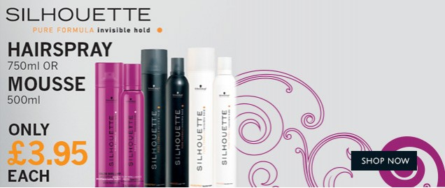 Silhouette Hairspray and Mousse