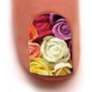 Trendy Nail Wraps( Bunches Of Love)
